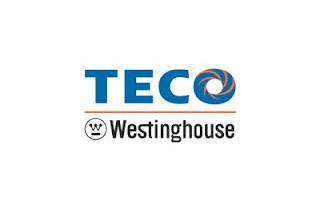 Techo Westinghouse logo